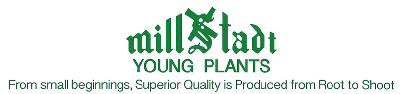 Millstadt Young Plants